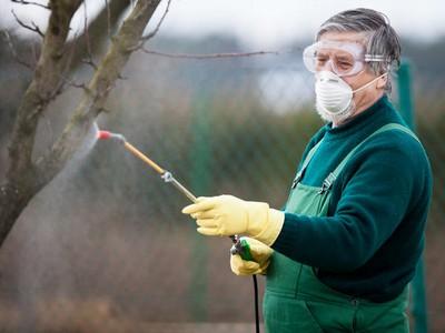 Пестициды - химическая защита растений от болезней и вредителей