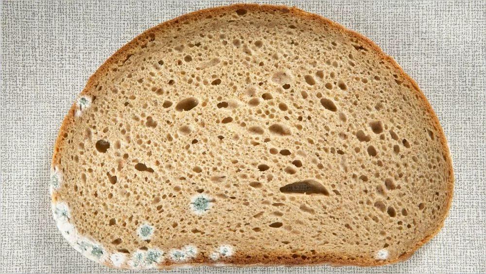 К чему снится хлеб с плесенью, толкование в 8 сонниках ...
