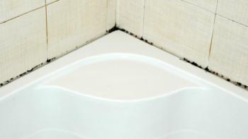 как убрать плесень в ванной в швах плитки в домашних условиях