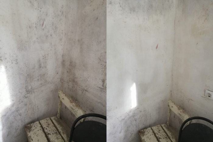 Плесень на стенах до и после